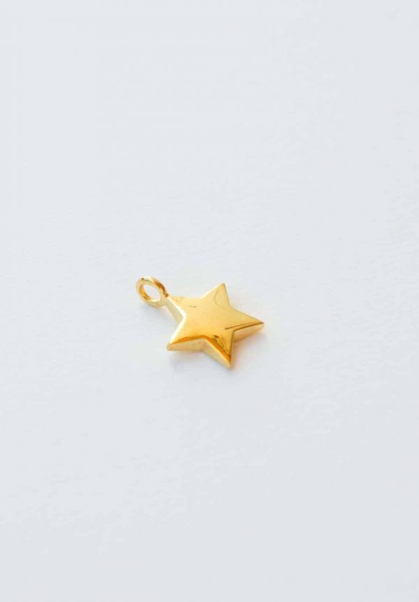 silver gold plated star charm
