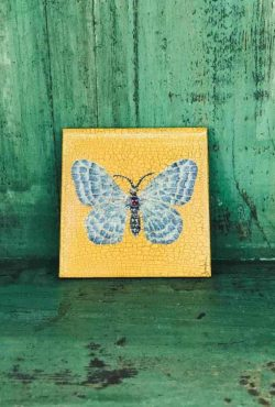 butterfly decoupage coaster