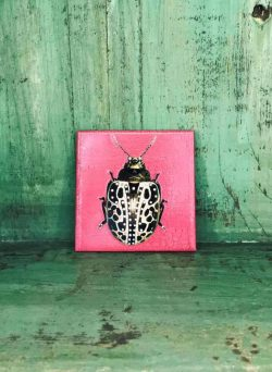 pink beetle coaster