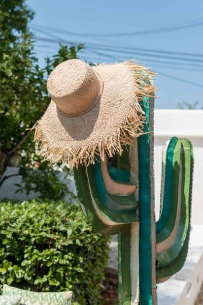 straw hat from Madagascar on a cactus