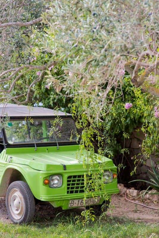 lime green old fashioned car in the garden